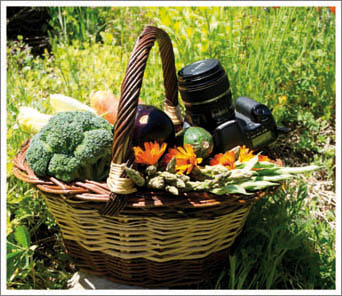 La agricultura ecológica como oportunidad de negocio