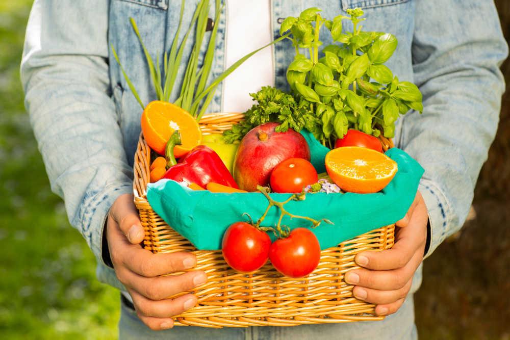 La importancia de la agricultura orgánica